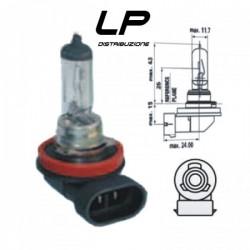 Lampadina H11 - 12 Volt 55W